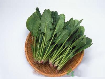 富含维生素B6的食物:菠菜